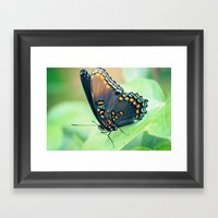 Color By Numbers Framed Art Print