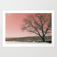 Sunset Park photo landscape Art Print
