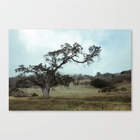 The love for Spooky Trees Canvas Print