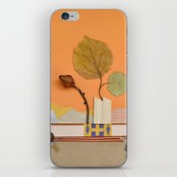 The Rose Of Autumn iPhone & iPod Skin