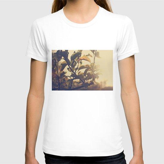 Fall Sun T-shirt