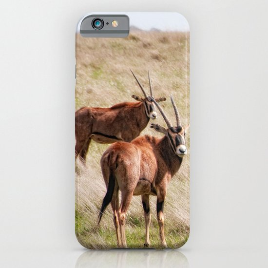 Wide open spaces iPhone & iPod Case