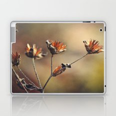 The Colors of Autumn Laptop & iPad Skin