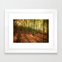 Glittering Forest Framed Art Print