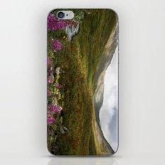Fireweed & Fall in Alaska  iPhone & iPod Skin