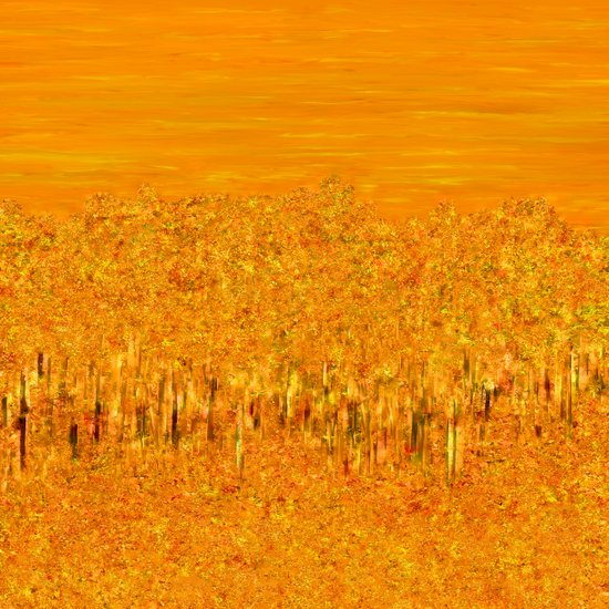 Tigers in Fields of Marigold Art Print