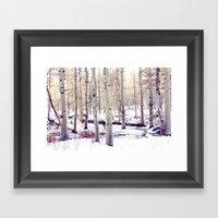 Aspen Trees in Winter Framed Art Print