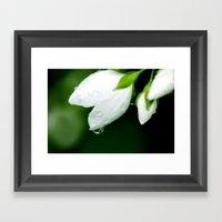 White Water Drops Framed Art Print