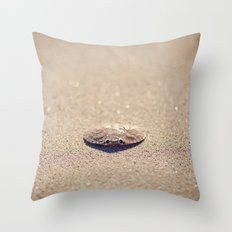 Remnants of Summer Throw Pillow