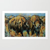 Spring Buffalo Art Print