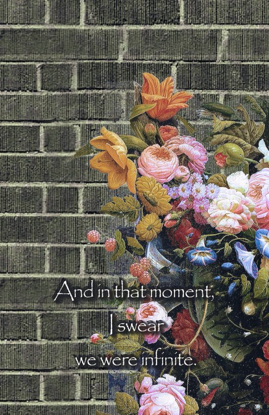 """""""And in that moment, I swear we were infinite."""" (The Perks of Being a Wallflower) Art Print"""