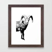 Ram Stamp  Framed Art Print