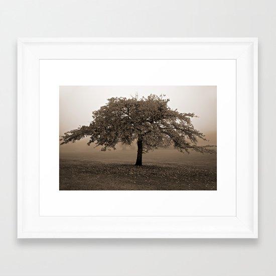 Peaceful morning Framed Art Print