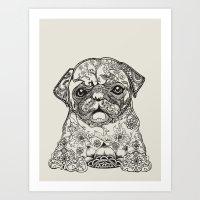 Persian Pug Art Print