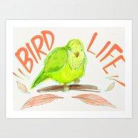 Bird Life Art Print