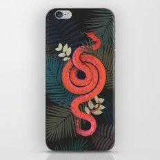 Tropical snake iPhone & iPod Skin