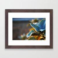 Desert Leaves Framed Art Print
