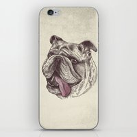 Bulldog King iPhone & iPod Skin