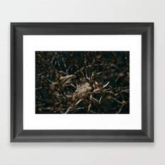 After The Snow Lifted Framed Art Print