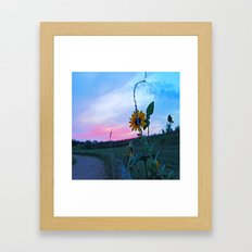 SunsetFlower Framed Art Print