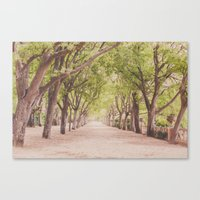 The beautiful garden Canvas Print