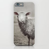 iPhone & iPod Case featuring The Sheep by Andrea Hurley