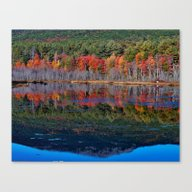 Mount Monadnock Reflecti… Canvas Print