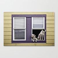 Window Watchers Canvas Print