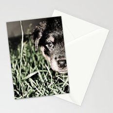 ROTTIE LOVE Stationery Cards