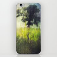 Connie's Backyard iPhone & iPod Skin