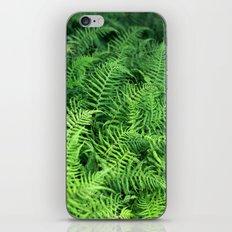 Layers of Ferns iPhone & iPod Skin