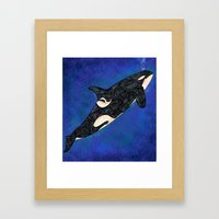 Killer Whale Framed Art Print