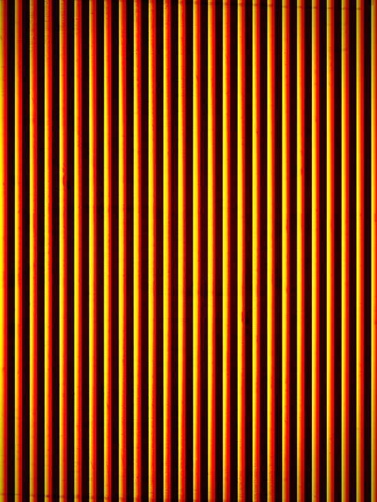 Yipes! Stripes! Canvas Print