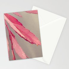 Red Cactus Stationery Cards