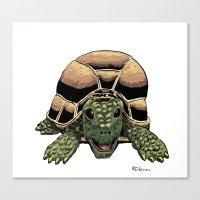 Happy Tortoise Canvas Print