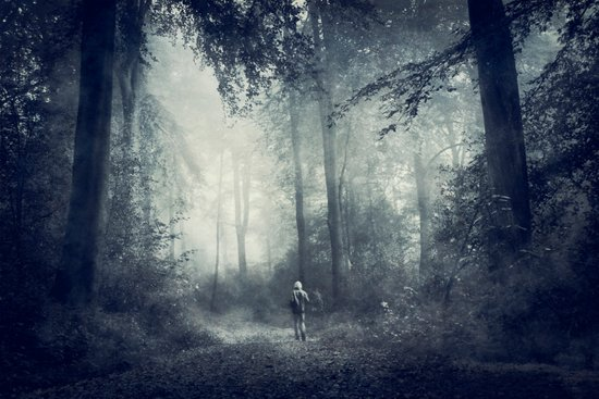 alone with nature Art Print