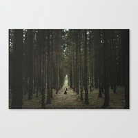 The Woods Of St Olof Canvas Print