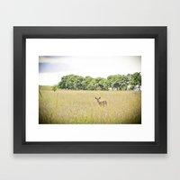 little dear Framed Art Print