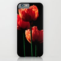 iPhone & iPod Case featuring Elegance by Stephie Butler Photography