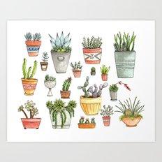 Potted Succulents Art Print