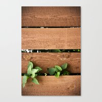 Juxtaposition Canvas Print