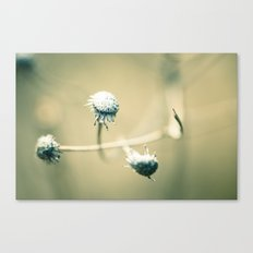 Our Song Canvas Print