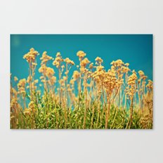 Blue & Gold & Green Canvas Print