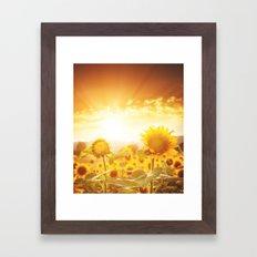 Majestic Sunflower Field Framed Art Print