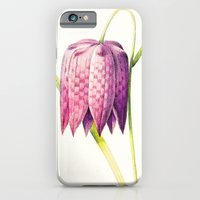iPhone & iPod Case featuring VIII. Vintage Flowers Botanical Print by Pierre-Joseph Redouté - Lilac Tulip by Anne Dante