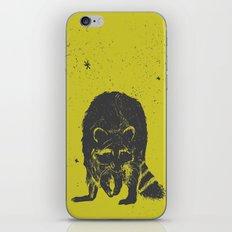 racoon iPhone & iPod Skin