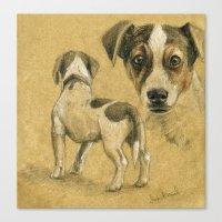 Jack Russel terrier SK080 Canvas Print