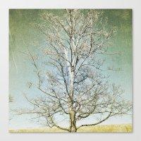 Tree 5 Canvas Print