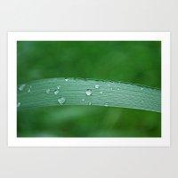 Grass Drop Art Print