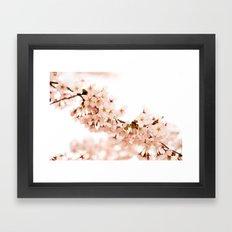 Cherry Blossom Explosion Framed Art Print